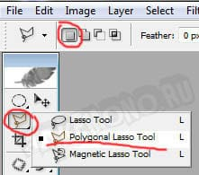 Polygonal Lasso Tool(L)