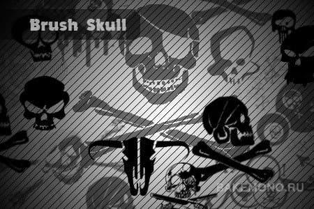Скачать кисти Skull /Черепа