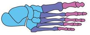 рисование ног