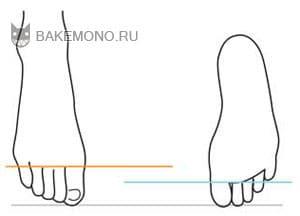 Некоторые детали рук применяются и к стопам