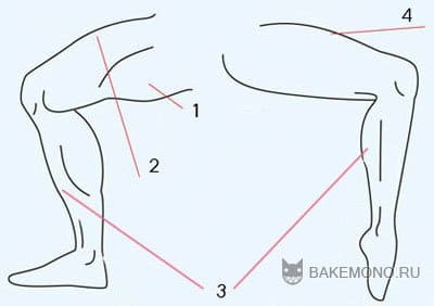 Основы рисования согнутых ног