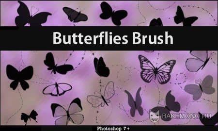 кисти бабочки