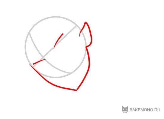 структуру лица