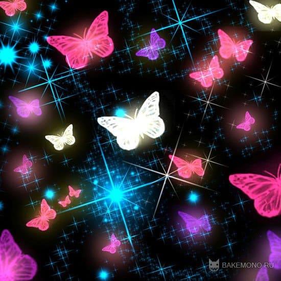 кисти бабочек
