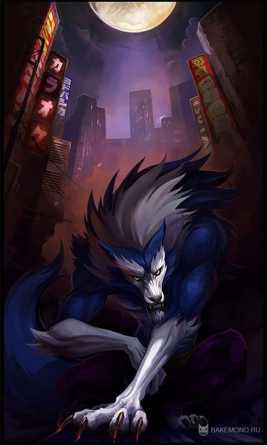 Аниме волк оборотень в городе