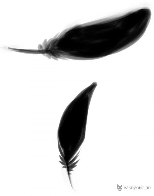 Как рисовать перья птиц