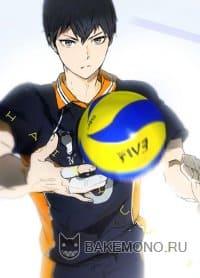 Волейбол!! OVA