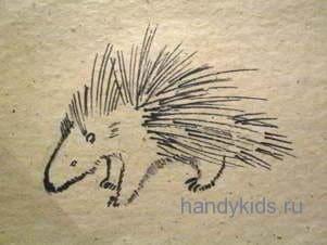 Старый рисунок дикобраза