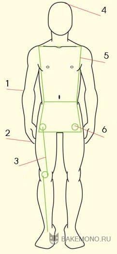 Мужское строение тела: