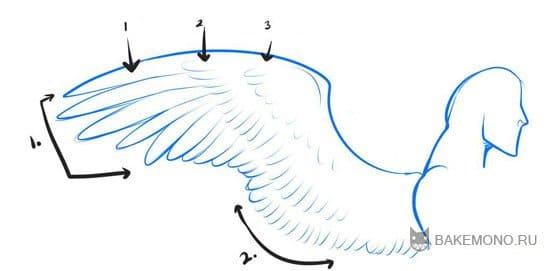 Схемы рисования крыльев