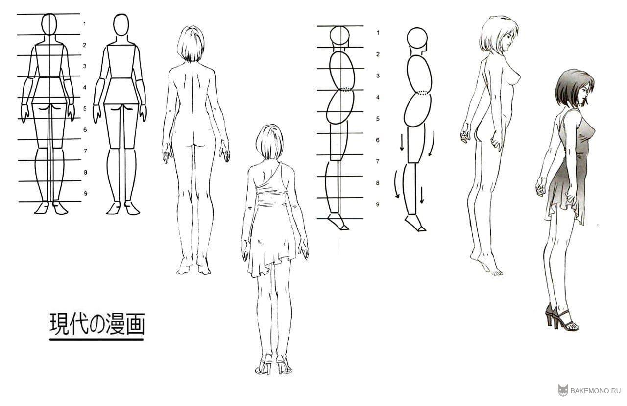 Как нарисовать аниме по схемах