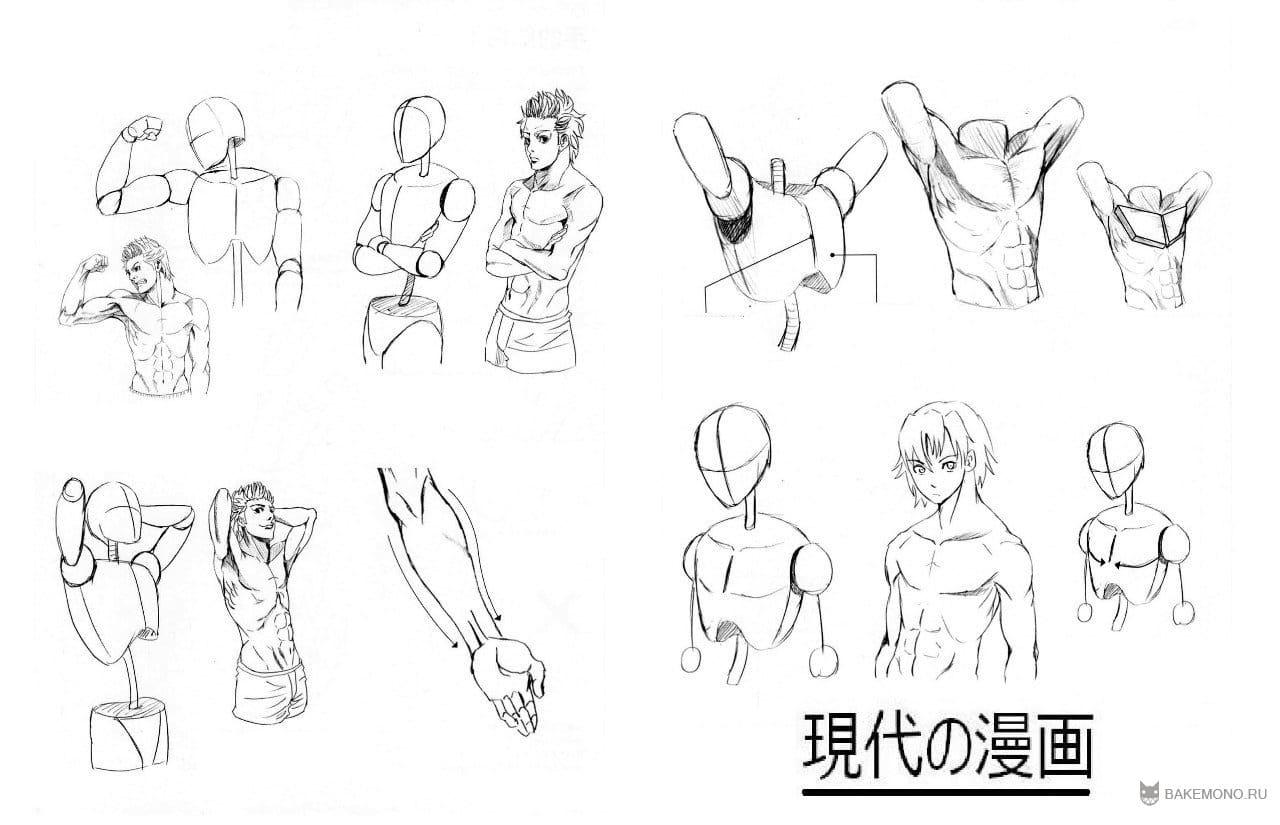 Схемы аниме персонажей